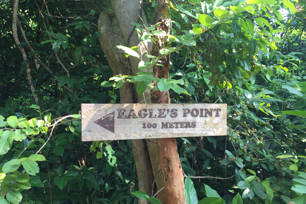 Go on a hike up Eagle's Point.