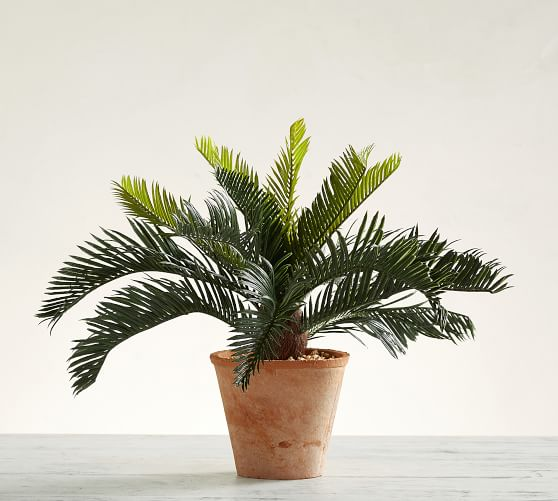 19. Pottery Barn, Faux Potted Sago Palm Tree, P3950
