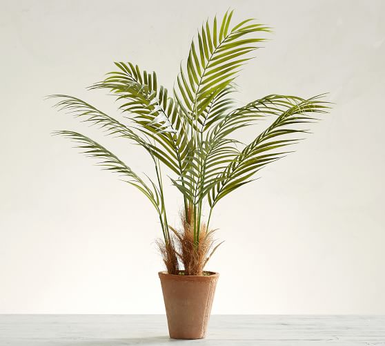 24. Pottery Barn, Faux Potted Areca Palm Tree, P3950