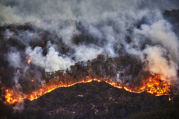A forest fire rages. The occurrence of forest fires and other destructive natural phenomena has increased with the onset of climate change. photograph Andrew Merry _ Getty _ WWF